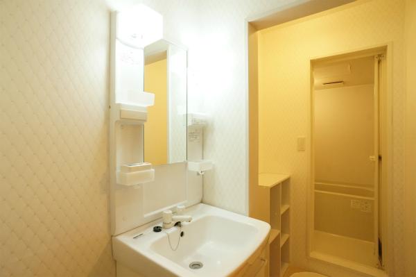 バスルームの手前にあるのが、洗面所です。