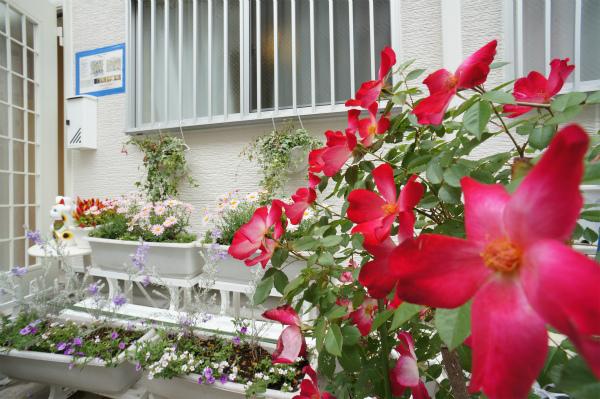入居者の皆さんもお花を追加してみては如何でしょうか?