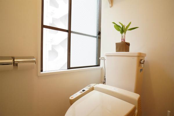 トイレには観葉植物が置かれています。
