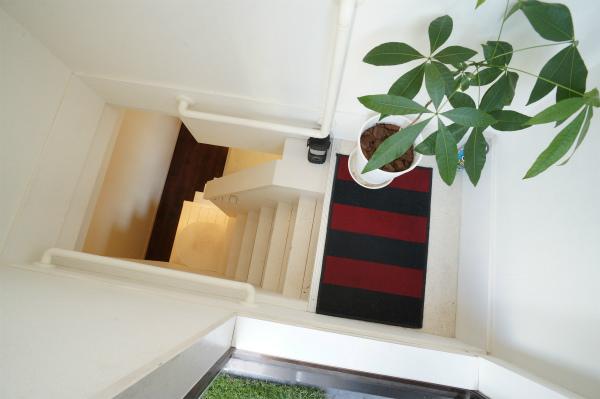屋上に上る階段にもグリーンが飾られている。
