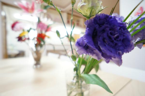 紫色のバラはとても美しい。