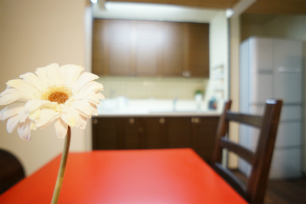 ダイニングテーブルには一厘のお花。