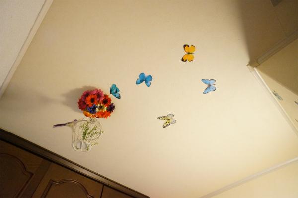 天井には小鳥や蝶々を発見。