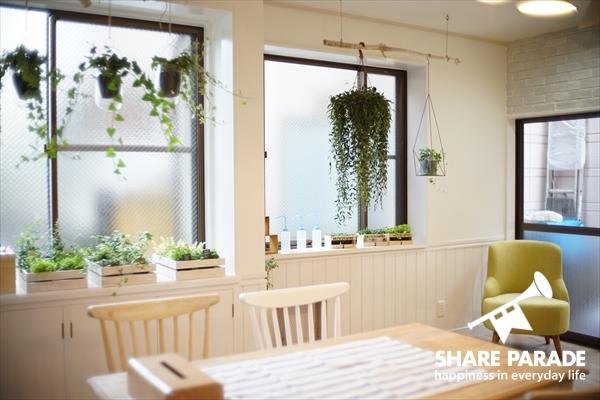 観葉植物の緑とカフェチェアの緑の相性もピッタリ。
