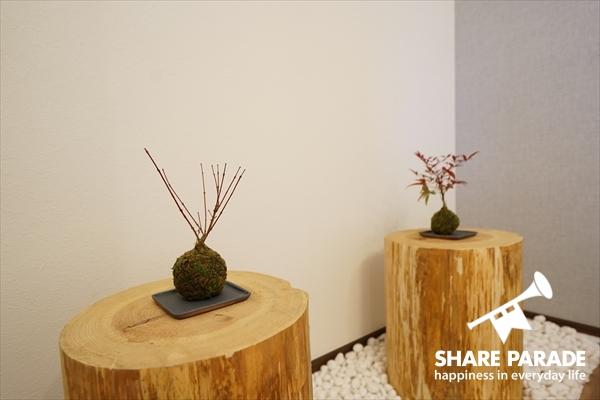 かわいい盆栽が2ついます。1つはもみじ。1つはヒメナンテン。