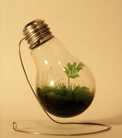 電球は光るもの? 新しい電球の使い方で生活にちょっとした温かみを